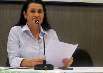 DEPUTADA ESTADUAL JUSMARI PEDE RECUPERAÇÃO DA ESTRADA QUE LIGA WANDERLEY A BR 242